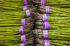 Purefresh, organic asparagus, New Zealand
